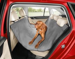 Přeprava psa v autě_autokabelky_2