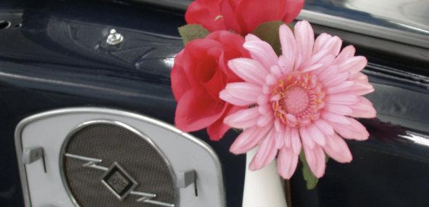 Volkswagen Brouk_avantgardní typ_autokabelky